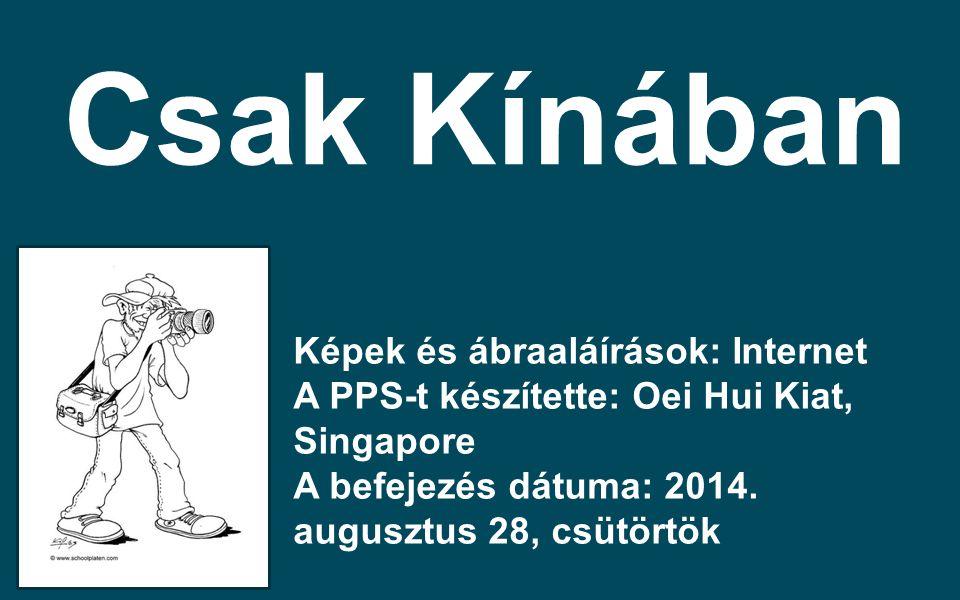 Képek és ábraaláírások: Internet A PPS-t készítette: Oei Hui Kiat, Singapore A befejezés dátuma: 2014. augusztus 28, csütörtök Csak Kínában