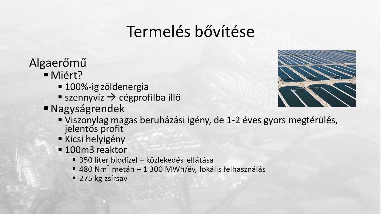 Termelés bővítése Algaerőmű  Miért?  100%-ig zöldenergia  szennyvíz  cégprofilba illő  Nagyságrendek  Viszonylag magas beruházási igény, de 1-2