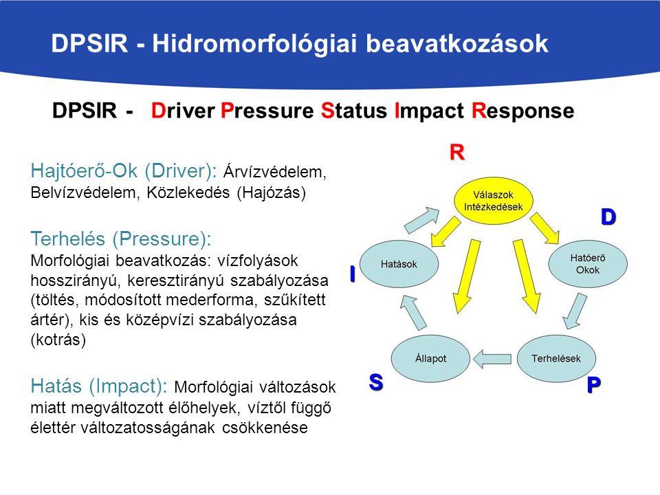 Hajtóerő-Ok (Driver): Árvízvédelem, Belvízvédelem, Közlekedés (Hajózás) Terhelés (Pressure): Morfológiai beavatkozás: vízfolyások hosszirányú, keresztirányú szabályozása (töltés, módosított mederforma, szűkített ártér), kis és középvízi szabályozása (kotrás) Hatás (Impact): Morfológiai változások miatt megváltozott élőhelyek, víztől függő élettér változatosságának csökkenése DPSIR - Hidromorfológiai beavatkozások R D P S I DPSIR - Driver Pressure Status Impact Response