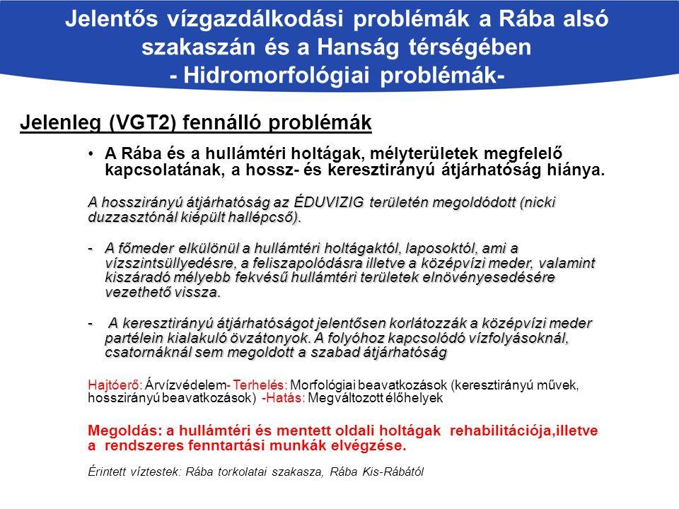 Jelentős vízgazdálkodási problémák a Rába alsó szakaszán és a Hanság térségében - Hidromorfológiai problémák- Jelenleg (VGT2) fennálló problémák A Rába és a hullámtéri holtágak, mélyterületek megfelelő kapcsolatának, a hossz- és keresztirányú átjárhatóság hiánya.