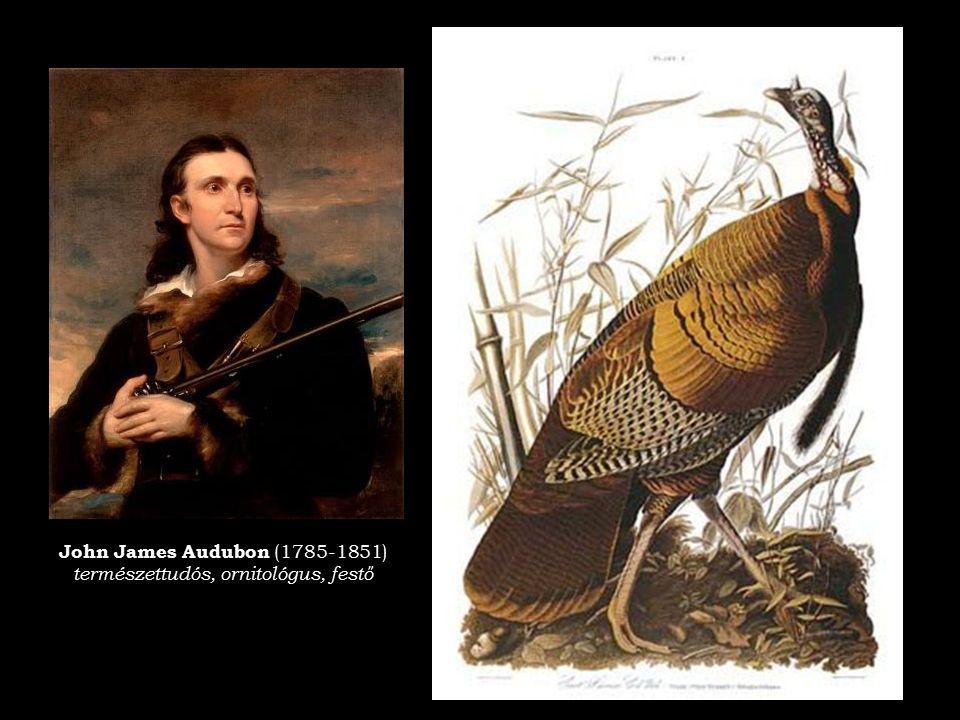 John James Audubon (1785-1851) természettudós, ornitológus, festő