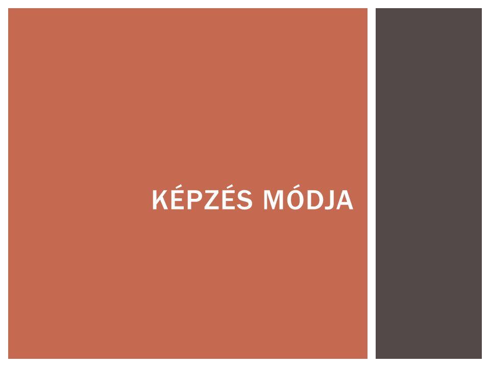 KÉPZÉS MÓDJA