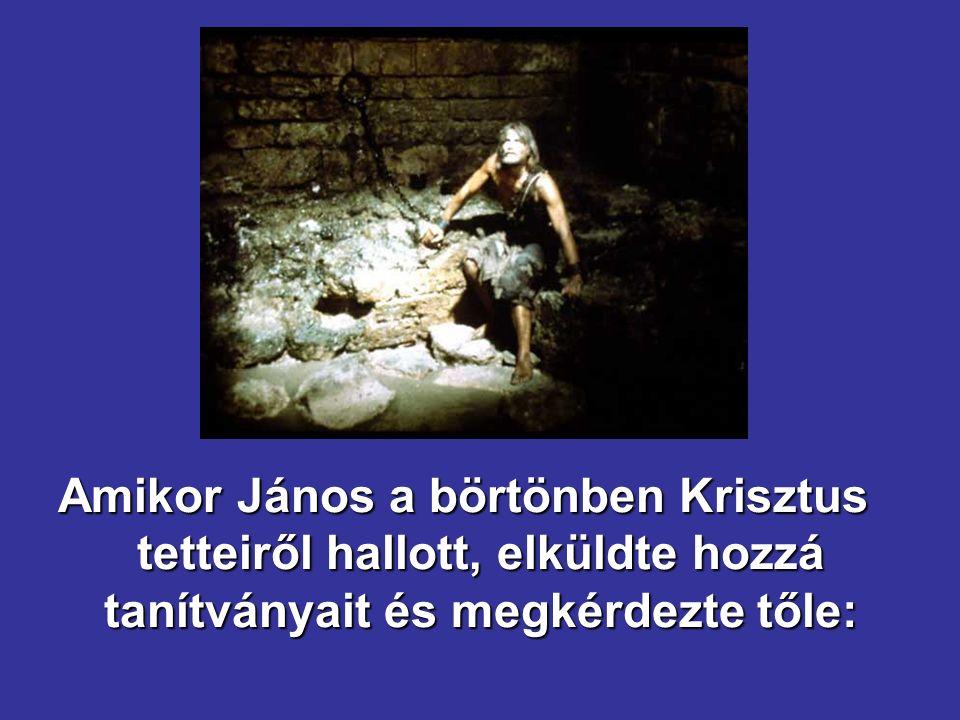 Amikor János a börtönben Krisztus tetteiről hallott, elküldte hozzá tanítványait és megkérdezte tőle: