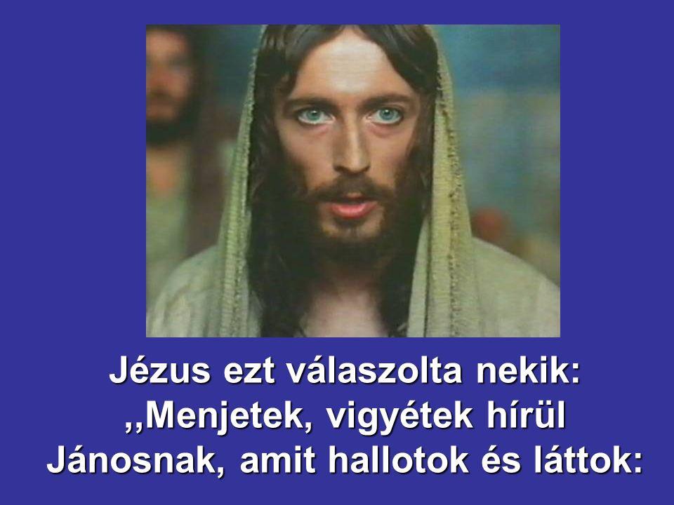 Jézus ezt válaszolta nekik:,,Menjetek, vigyétek hírül Jánosnak, amit hallotok és láttok: