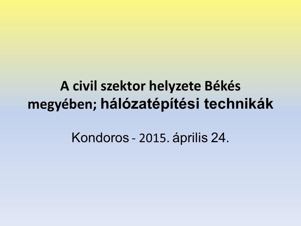 A civil szektor helyzete Békés megyében; hálózatépítési technikák Kondoros - 2015. április 24.