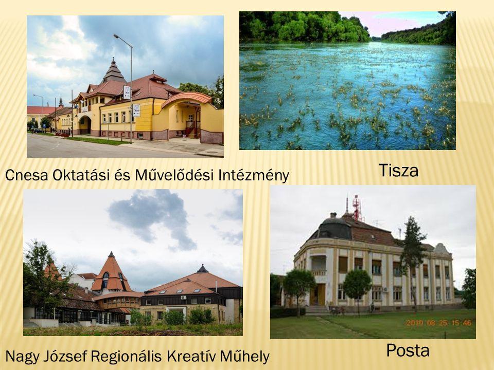 Nagy József Regionális Kreatív Műhely Cnesa Oktatási és Művelődési Intézmény Posta Tisza