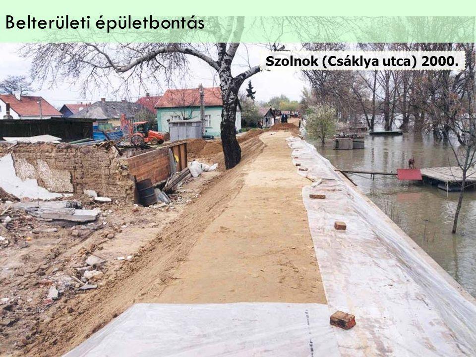 Szolnok (Csáklya utca) 2000. Belterületi épületbontás