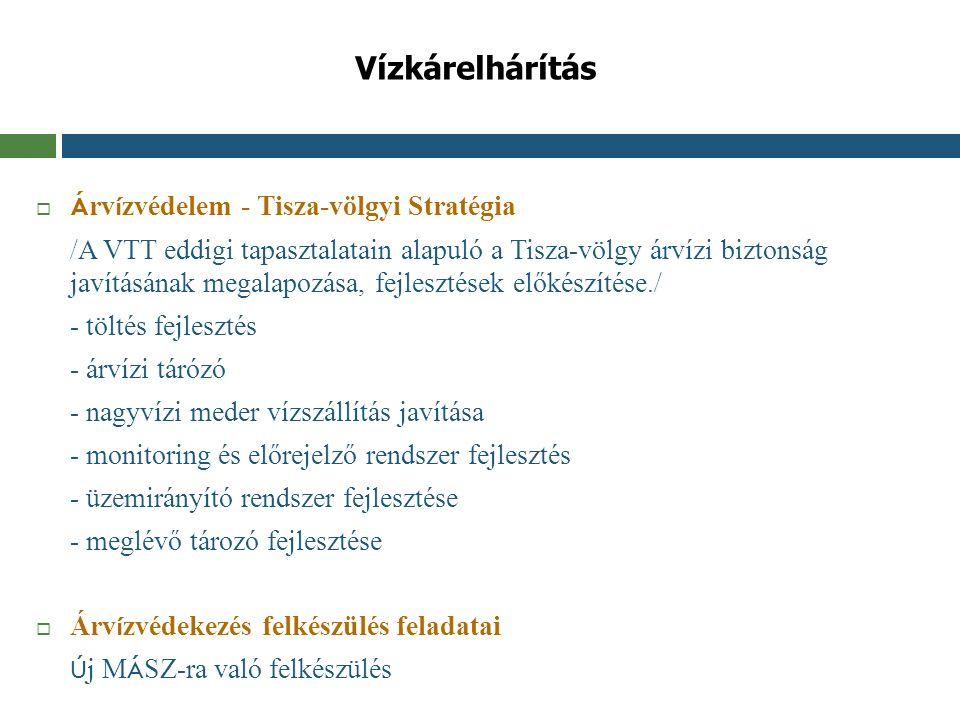 Vízkárelhárítás  Á rv í zvédelem - Tisza-völgyi Stratégia /A VTT eddigi tapasztalatain alapuló a Tisza-völgy árvízi biztonság javításának megalapozás