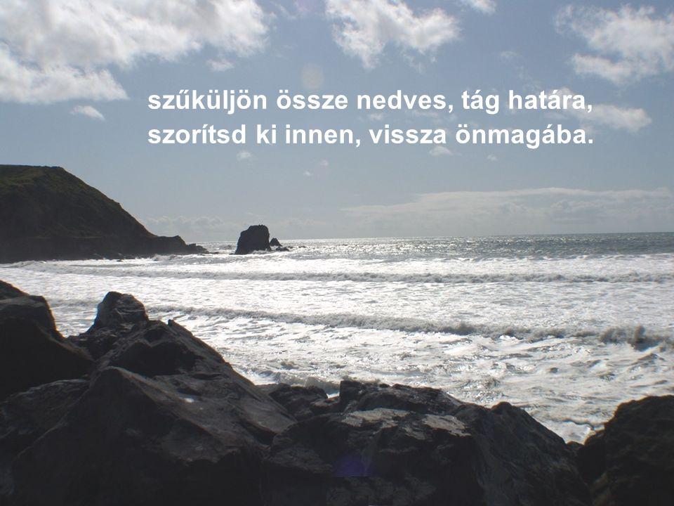 És tervet tervre szőtt legott agyam: telj be a legpompásabb élvezettel, a zsarnok tengert partjától rekeszd el,