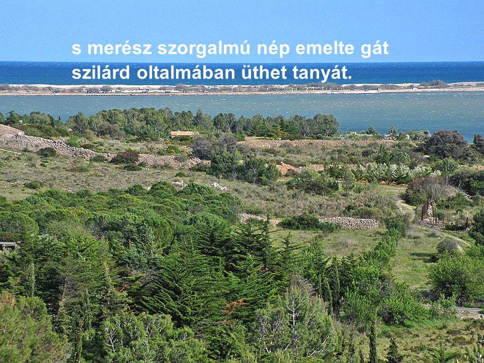 Zöld a mező s termékeny; ember, állat az új földön nyomban otthont találhat,