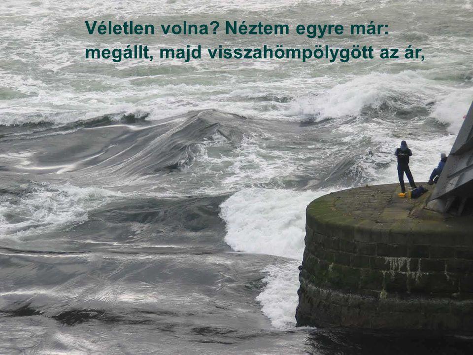 majd abbahagyta, s bősz hullámsereggel a part lapályát ostromolta zúgva.