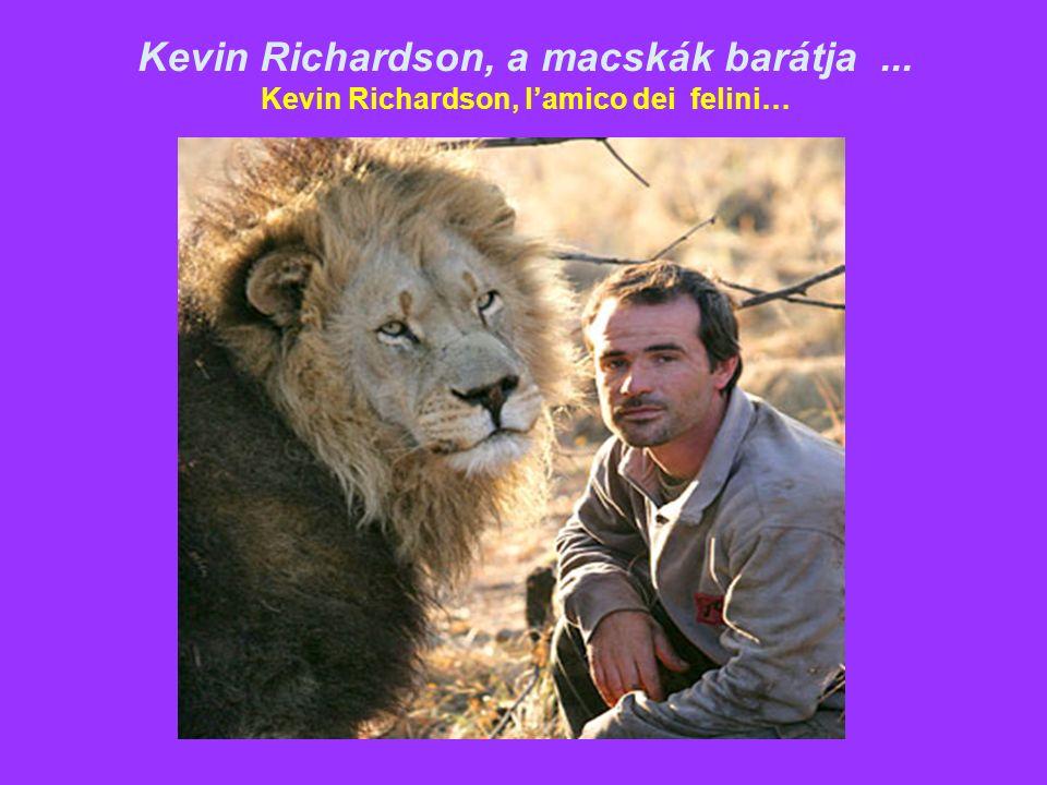 Kevin Richardson, a macskák barátja... Kevin Richardson, l'amico dei felini…