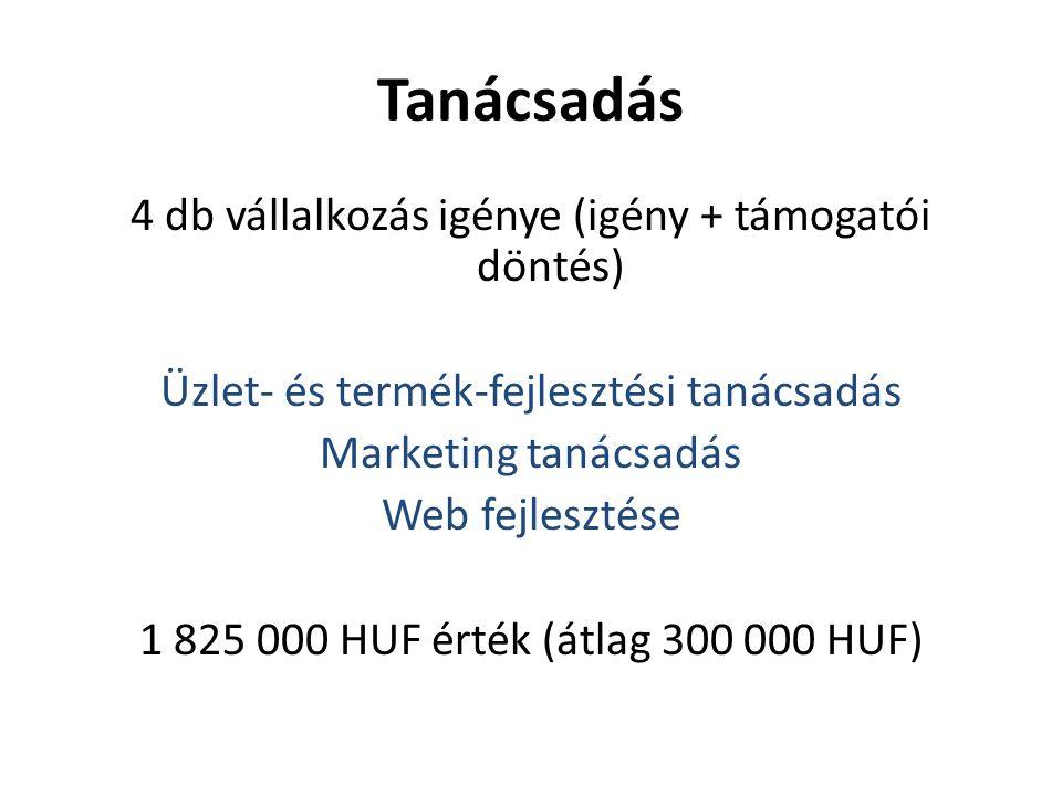 Tanácsadás 4 db vállalkozás igénye (igény + támogatói döntés) Üzlet- és termék-fejlesztési tanácsadás Marketing tanácsadás Web fejlesztése 1 825 000 HUF érték (átlag 300 000 HUF)