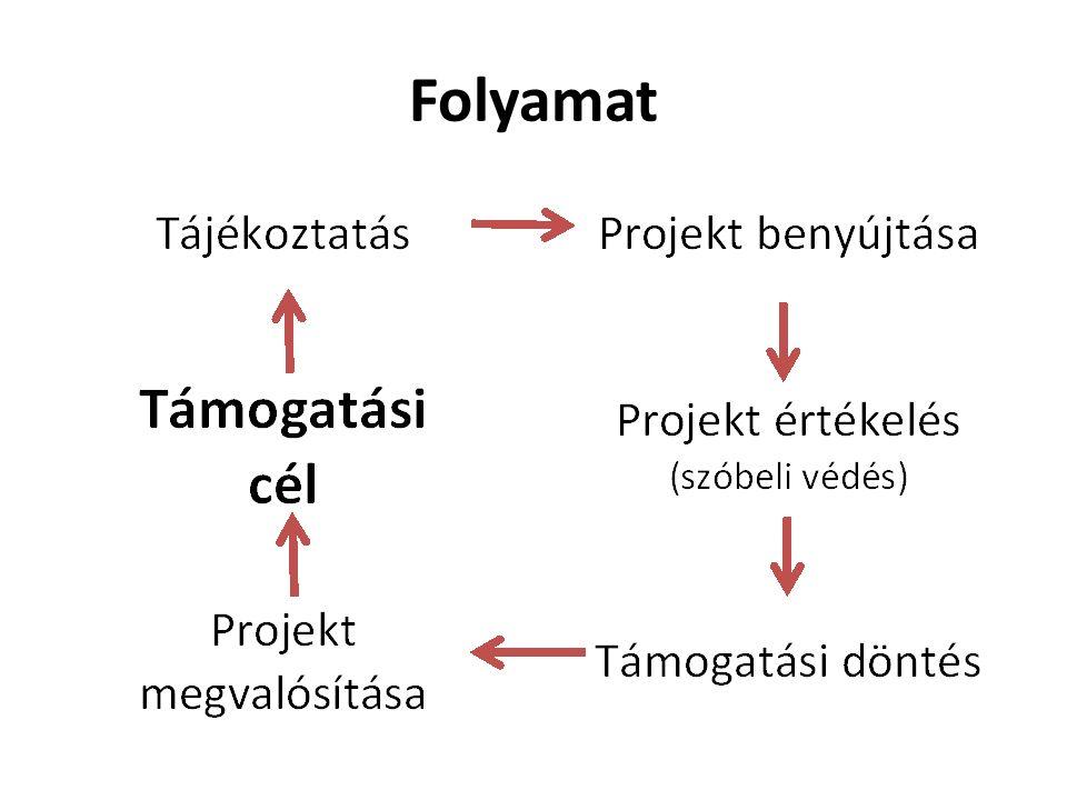 Folyamat