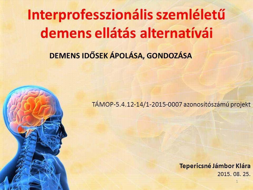 Interprofesszionális szemléletű demens ellátás alternatívái DEMENS IDŐSEK ÁPOLÁSA, GONDOZÁSA TÁMOP-5.4.12-14/1-2015-0007 azonosítószámú projekt Teperi