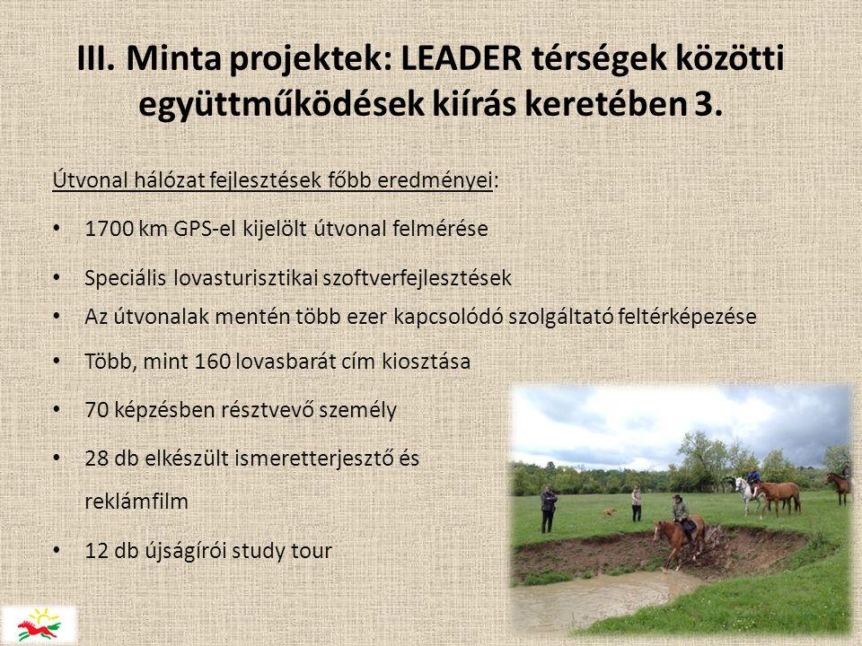 III.Minta projektek: LEADER térségek közötti együttműködések kiírás keretében 3.