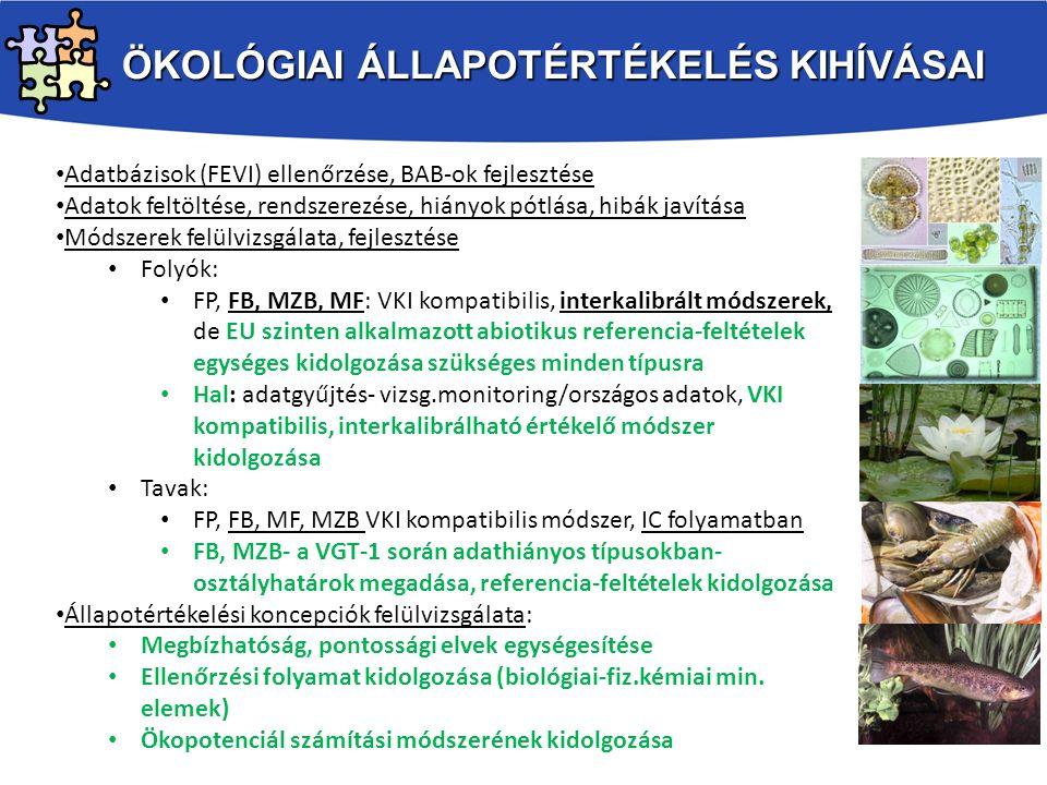 VGT2 PONTSZERŰ SZENNYEZÉSEKKEL KAPCSOLATOS INTÉZKEDÉSEK 1.
