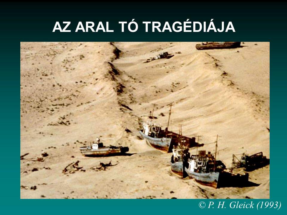 AZ ARAL TÓ TRAGÉDIÁJA © P. H. Gleick (1993)