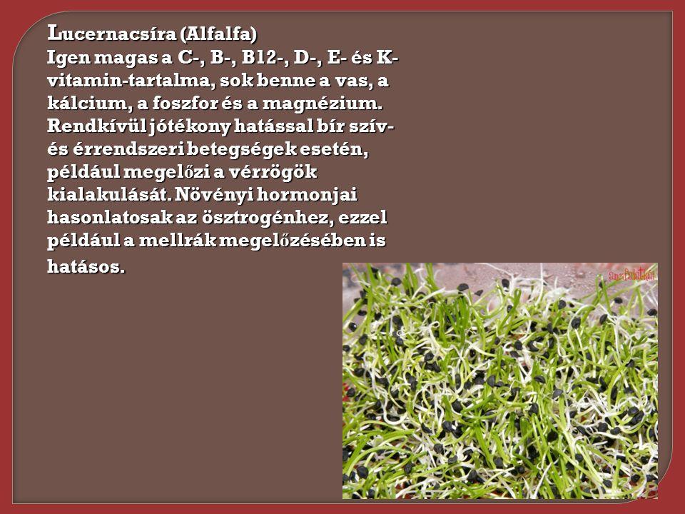 L ucernacsíra (Alfalfa) Igen magas a C-, B-, B12-, D-, E- és K- vitamin-tartalma, sok benne a vas, a kálcium, a foszfor és a magnézium. Rendkívül jóté