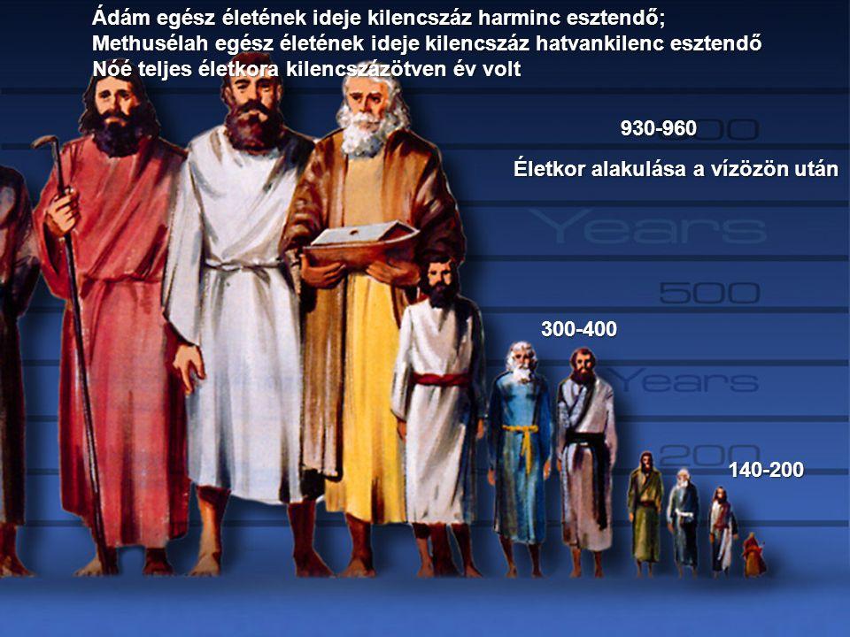 Életkor alakulása a vízözön után 930-960 300-400 140-200 Ádám egész életének ideje kilencszáz harminc esztendő; Methusélah egész életének ideje kilenc