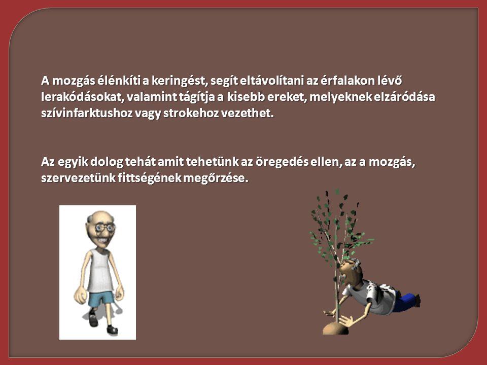 A mozgás élénkíti a keringést, segít eltávolítani az érfalakon lévő lerakódásokat, valamint tágítja a kisebb ereket, melyeknek elzáródása szívinfarktu