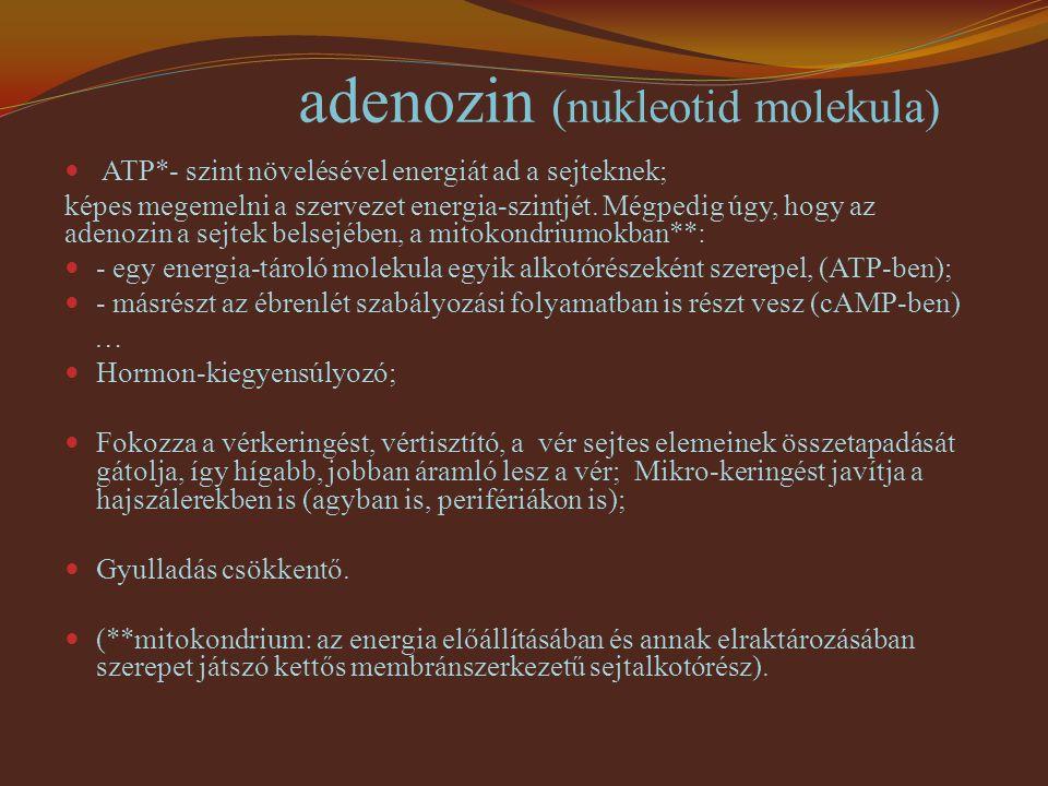 adenozin (nukleotid molekula) ATP*- szint növelésével energiát ad a sejteknek; képes megemelni a szervezet energia-szintjét. Mégpedig úgy, hogy az ade