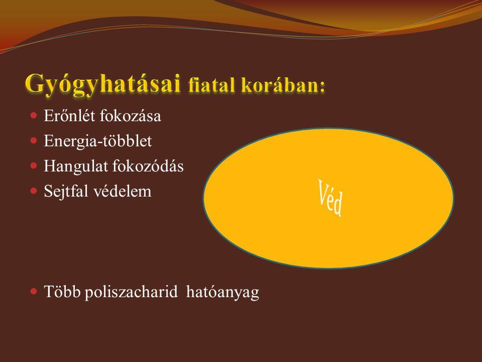 Erőnlét fokozása Energia-többlet Hangulat fokozódás Sejtfal védelem Több poliszacharid hatóanyag