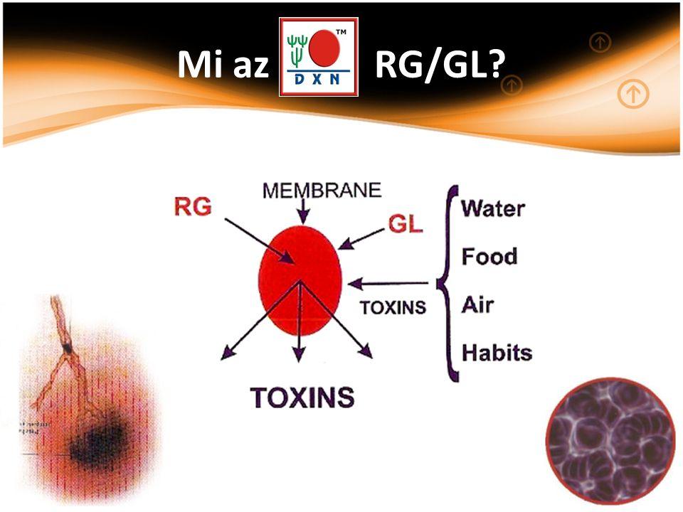 Mi az RG/GL?