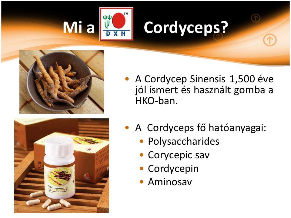 Mi a Cordyceps? A Cordycep Sinensis 1,500 éve jól ismert és használt gomba a HKO-ban. A Cordyceps fő hatóanyagai: Polysaccharides Corycepic sav Cordyc