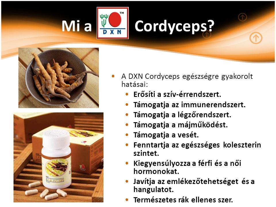 Mi a Cordyceps? A DXN Cordyceps egészségre gyakorolt hatásai: Erősíti a szív-érrendszert. Támogatja az immunerendszert. Támogatja a légzőrendszert. Tá