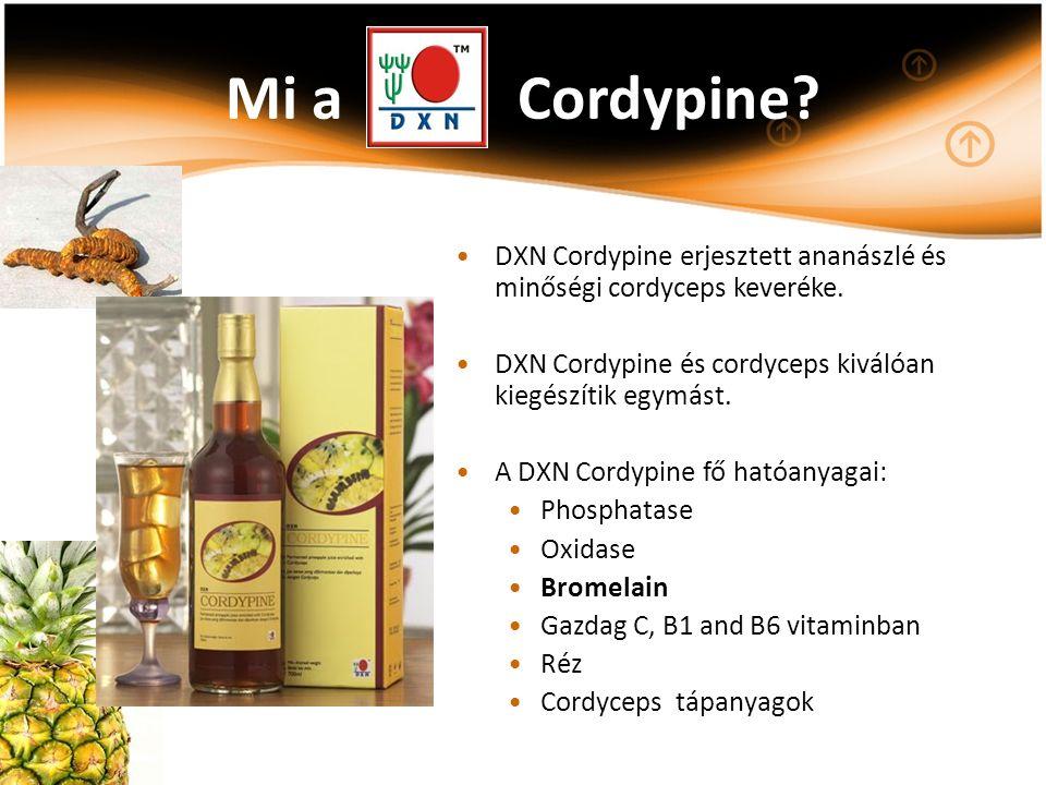 Mi a Cordypine? DXN Cordypine erjesztett ananászlé és minőségi cordyceps keveréke. DXN Cordypine és cordyceps kiválóan kiegészítik egymást. A DXN Cord