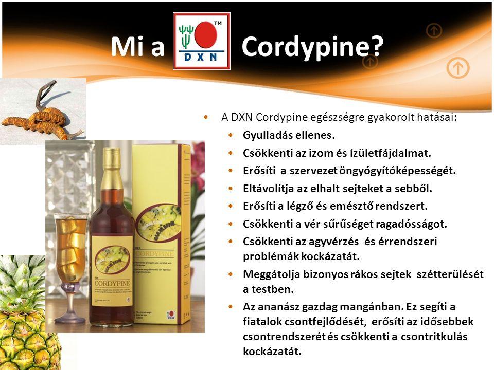 Mi a Cordypine? A DXN Cordypine egészségre gyakorolt hatásai: Gyulladás ellenes. Csökkenti az izom és ízületfájdalmat. Erősíti a szervezet öngyógyítók