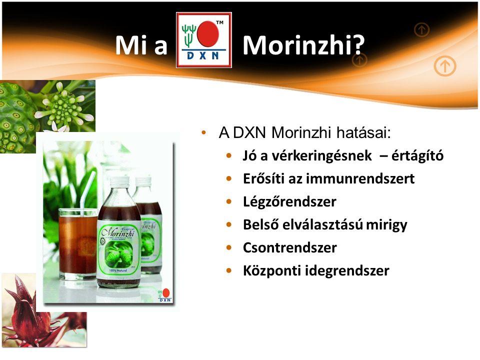 Mi a Morinzhi? A DXN Morinzhi hatásai: Jó a vérkeringésnek – értágító Erősíti az immunrendszert Légzőrendszer Belső elválasztású mirigy Csontrendszer