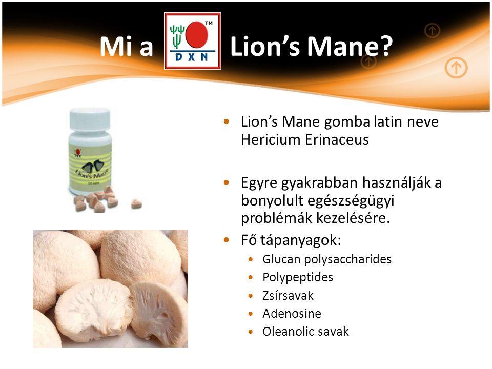 Mi a Lion's Mane? Lion's Mane gomba latin neve Hericium Erinaceus Egyre gyakrabban használják a bonyolult egészségügyi problémák kezelésére. Fő tápany