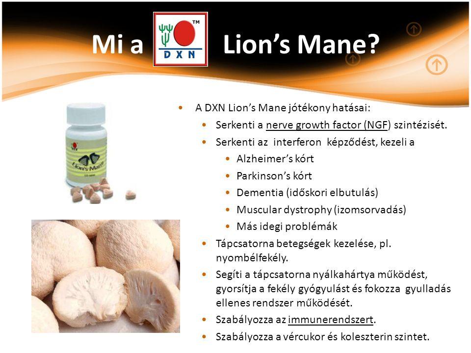 Mi a Lion's Mane? A DXN Lion's Mane jótékony hatásai: Serkenti a nerve growth factor (NGF) szintézisét. Serkenti az interferon képződést, kezeli a Alz