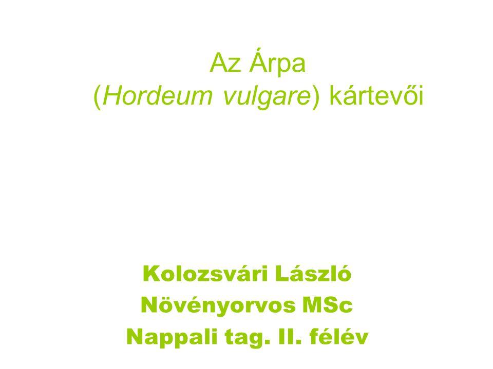 Az Árpa (Hordeum vulgare) kártevői Kolozsvári László Növényorvos MSc Nappali tag. II. félév