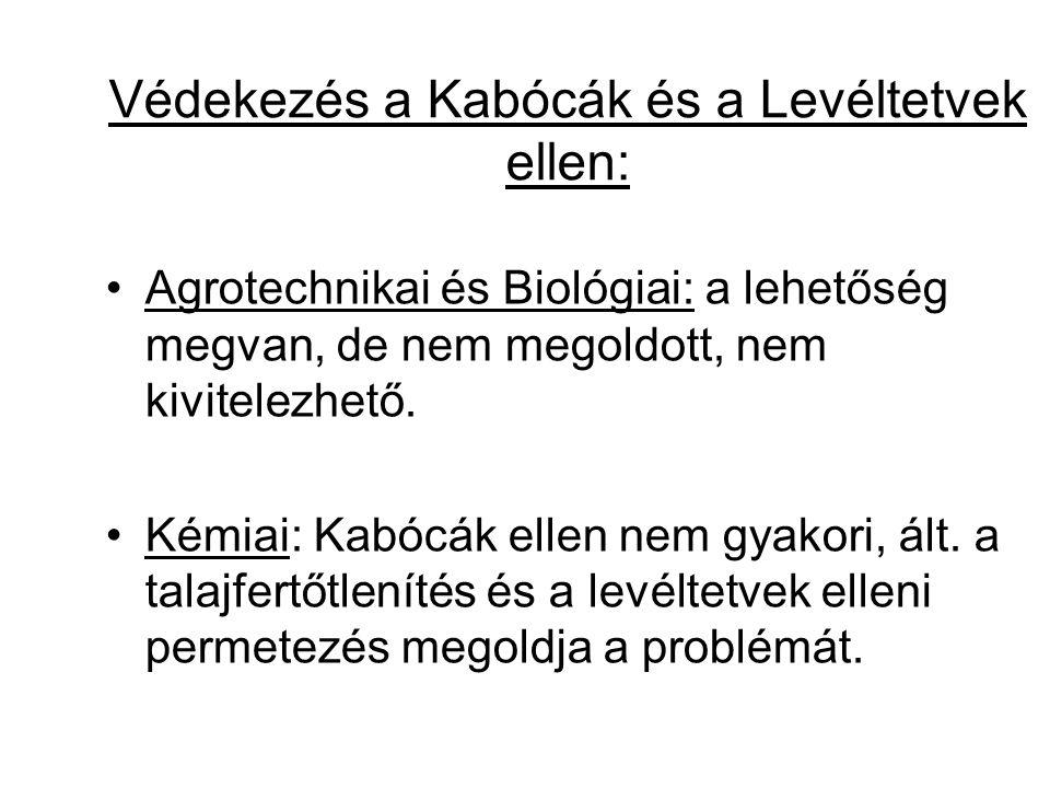 Védekezés a Kabócák és a Levéltetvek ellen: Agrotechnikai és Biológiai: a lehetőség megvan, de nem megoldott, nem kivitelezhető. Kémiai: Kabócák ellen