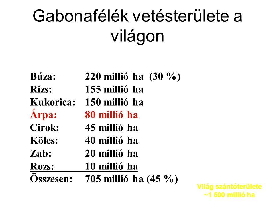 Gabonafélék vetésterülete a világon Búza:220 millió ha (30 %) Rizs:155 millió ha Kukorica:150 millió ha Árpa:80 millió ha Cirok:45 millió ha Köles:40 millió ha Zab:20 millió ha Rozs:10 millió ha Összesen:705 millió ha (45 %) Világ szántóterülete ~1 500 millió ha