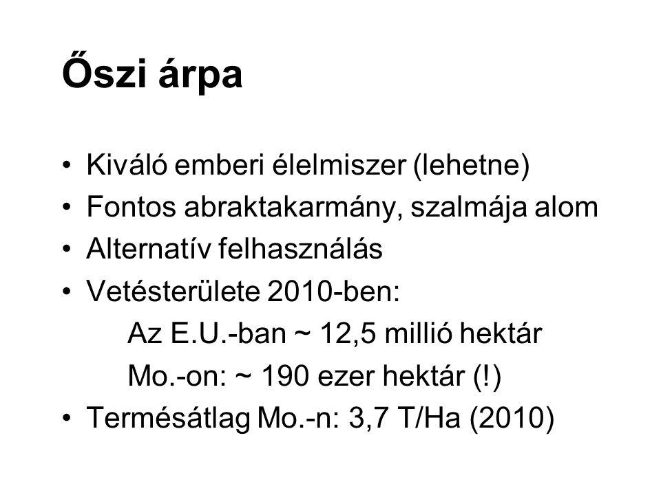 Őszi árpa Kiváló emberi élelmiszer (lehetne) Fontos abraktakarmány, szalmája alom Alternatív felhasználás Vetésterülete 2010-ben: Az E.U.-ban ~ 12,5 millió hektár Mo.-on: ~ 190 ezer hektár (!) Termésátlag Mo.-n: 3,7 T/Ha (2010)