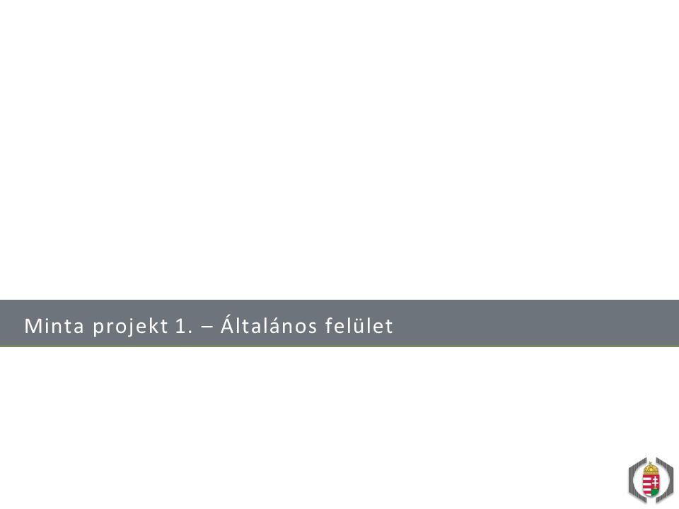 Minta projekt 1. – Általános felület