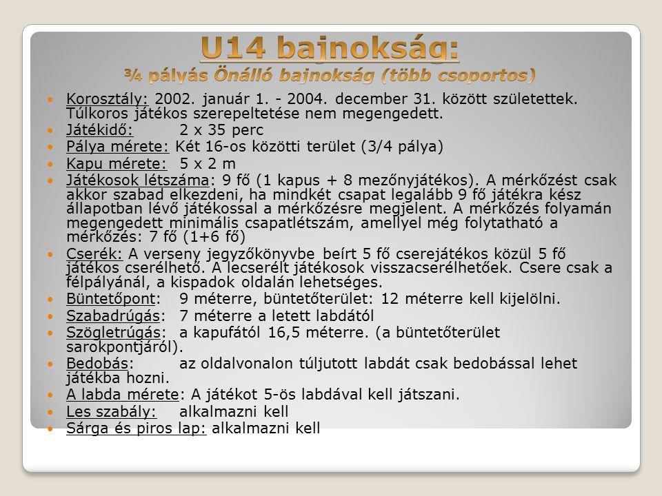 Korosztály: 2002. január 1. - 2004. december 31.