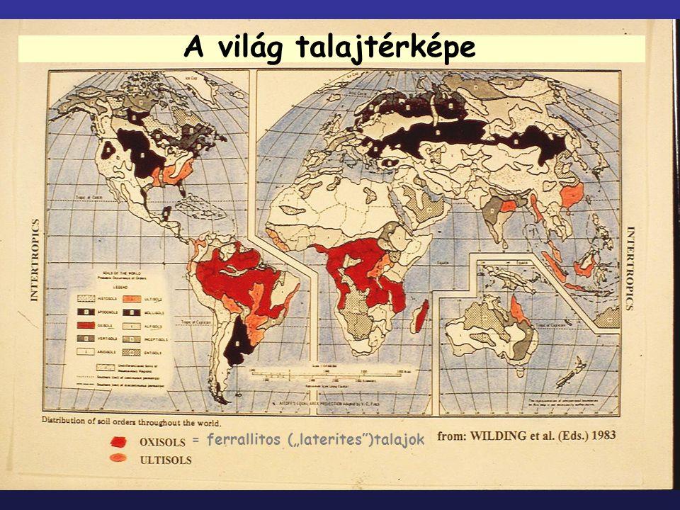 """A világ talajtérképe = ferrallitos (""""laterites"""")talajok"""