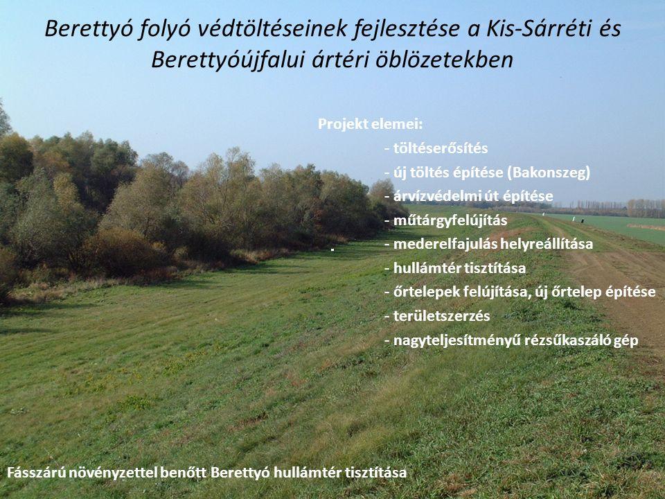 Fásszárú növényzettel benőtt Berettyó hullámtér tisztítása Berettyó folyó védtöltéseinek fejlesztése a Kis-Sárréti és Berettyóújfalui ártéri öblözetek