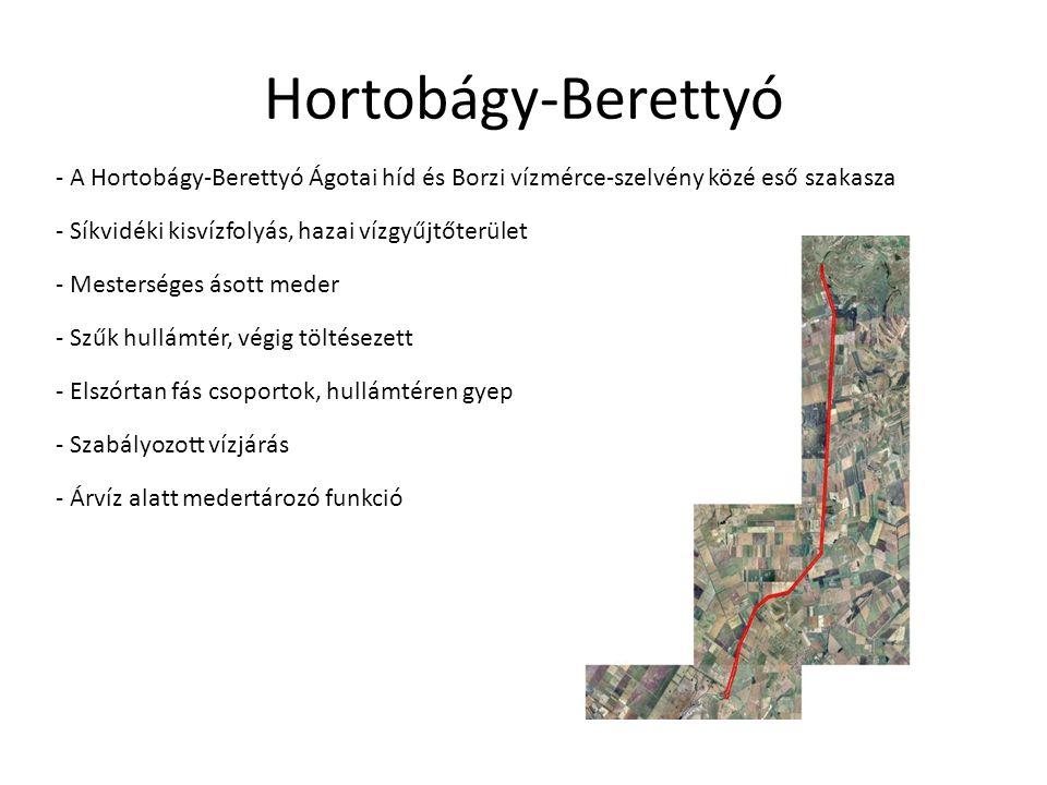 - A Hortobágy-Berettyó Ágotai híd és Borzi vízmérce-szelvény közé eső szakasza - Síkvidéki kisvízfolyás, hazai vízgyűjtőterület - Mesterséges ásott me