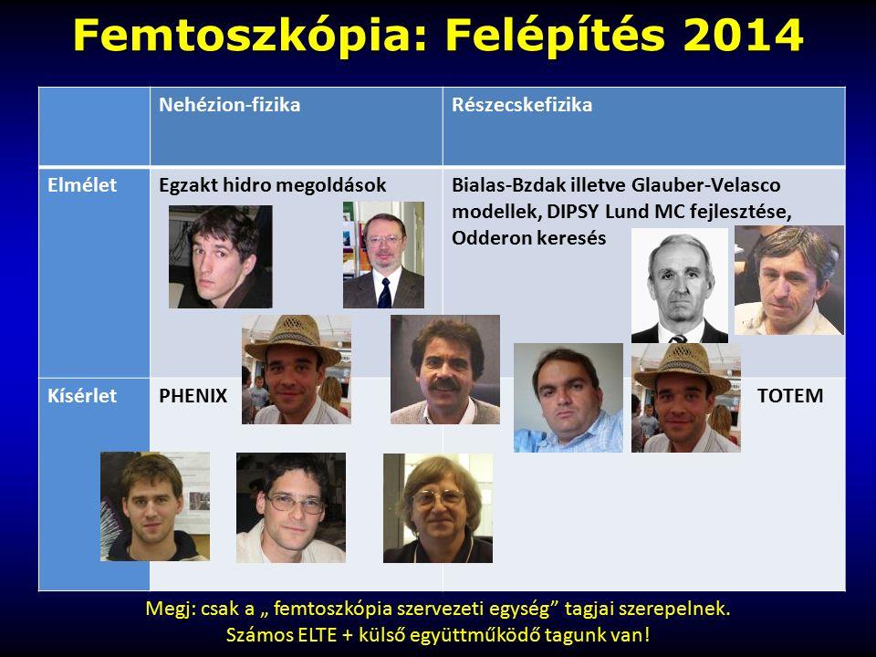 Femtoszkópia: Felépítés 2014 Nehézion-fizikaRészecskefizika ElméletEgzakt hidro megoldásokBialas-Bzdak illetve Glauber-Velasco modellek, DIPSY Lund MC