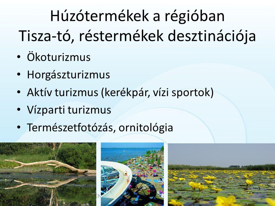 Húzótermékek a régióban Tisza-tó, réstermékek desztinációja Ökoturizmus Horgászturizmus Aktív turizmus (kerékpár, vízi sportok) Vízparti turizmus Term