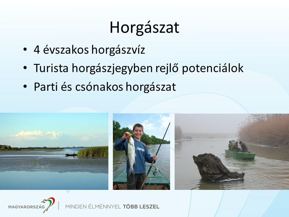 Horgászat 4 évszakos horgászvíz Turista horgászjegyben rejlő potenciálok Parti és csónakos horgászat