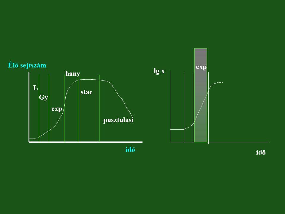 L Gy exp hany stac pusztulási Élő sejtszám idő exp lg x idő