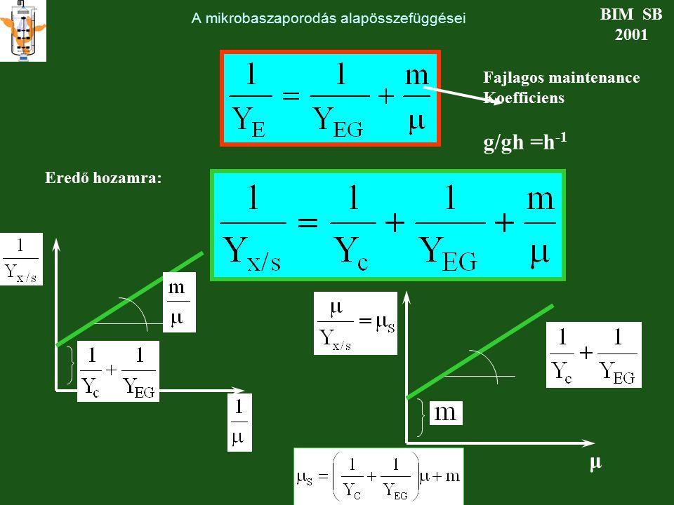 A mikrobaszaporodás alapösszefüggései BIM SB 2001 Fajlagos maintenance Koefficiens g/gh =h -1 Eredő hozamra: μ