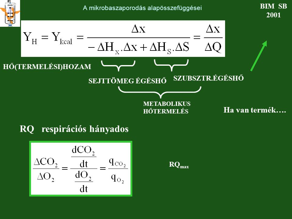 A mikrobaszaporodás alapösszefüggései BIM SB 2001 HŐ(TERMELÉSI)HOZAM SEJTTÖMEG ÉGÉSHŐ SZUBSZTR.ÉGÉSHŐ METABOLIKUS HŐTERMELÉS RQ respirációs hányados H